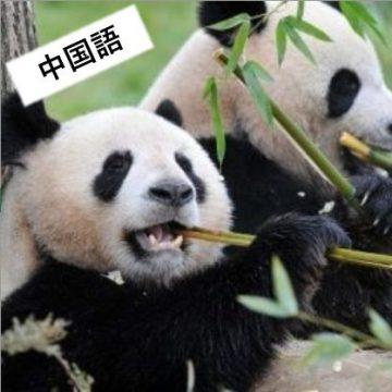 中国語の画像